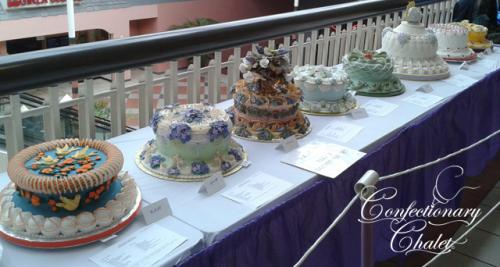 Master Student's Cakes- SD Cake Show 3/2013